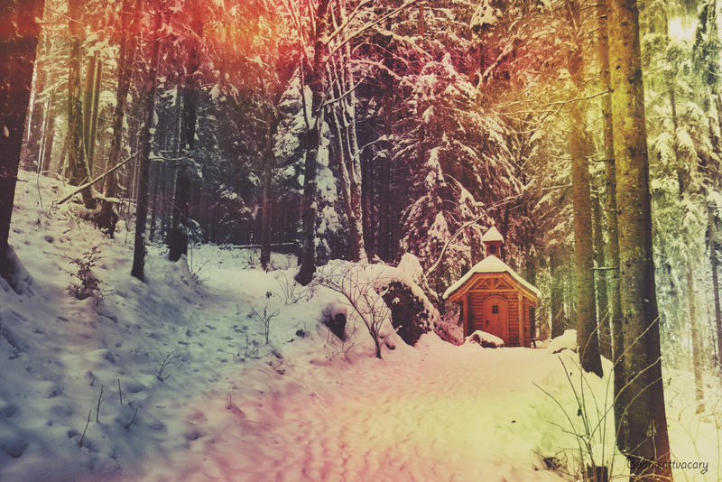 the winterwoodlanddays I by Bodhisattvacary