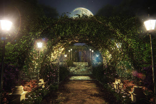 Garden nightwalk