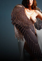 Freyja: Falcon Cloak by MarisVision