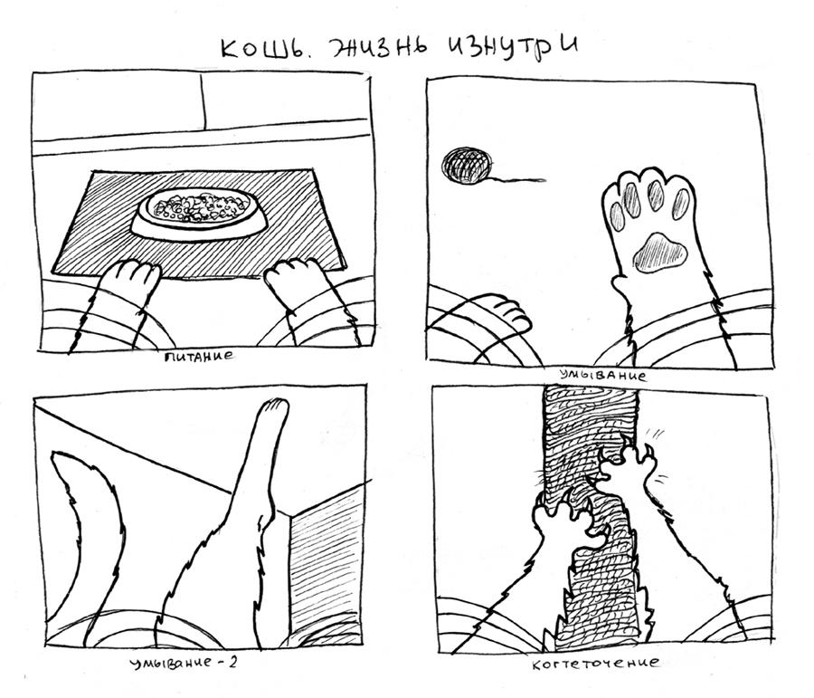 Cat's life by rudwolf