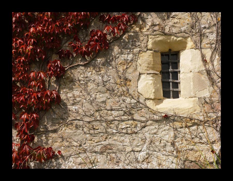 Prozori koji govore - Page 3 Photography__architecture_exterior_by_harrysdad-d4m526a