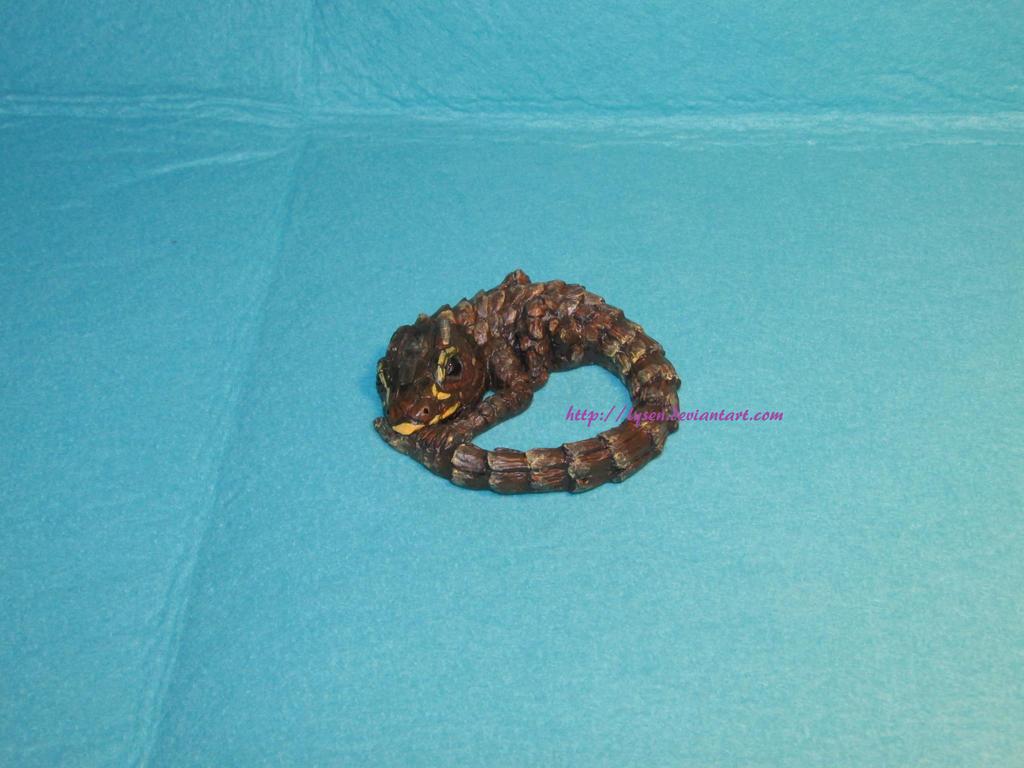 Armadillo girdled lizard by lysen