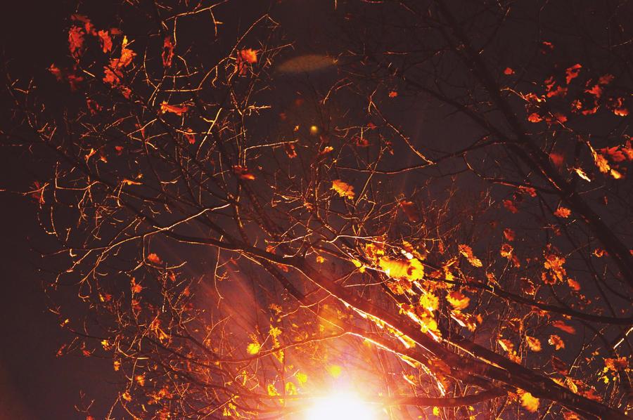 un lever de soleil artificiel