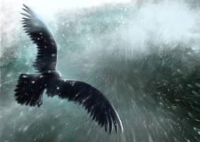 Eagle by unikatdesign