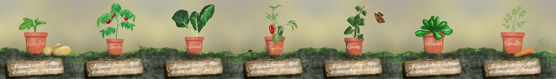 Vegetables (commissioned work)