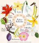 Naturkalender