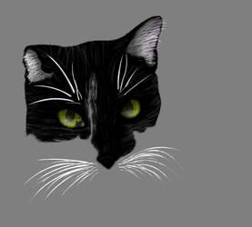 Jade the Cat