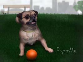 Pupetta the Dog