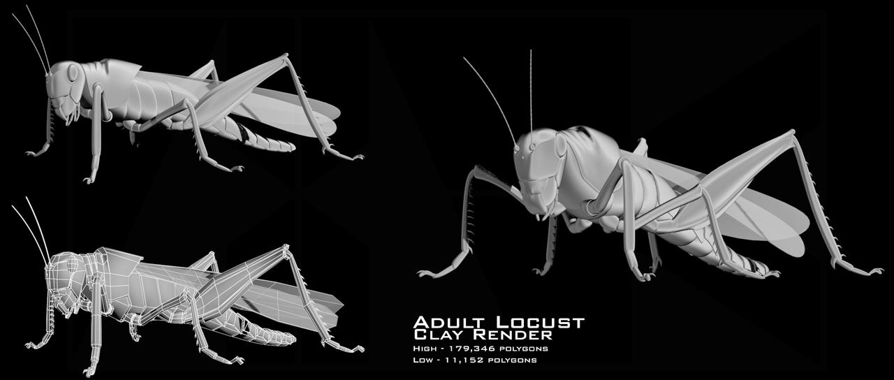 Locust clay render by Facial-Tic