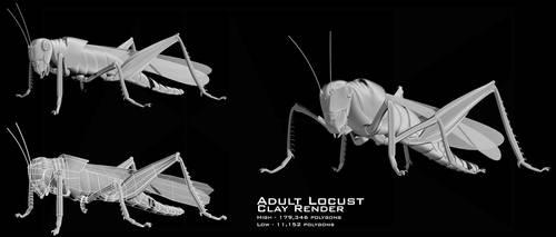Locust clay render