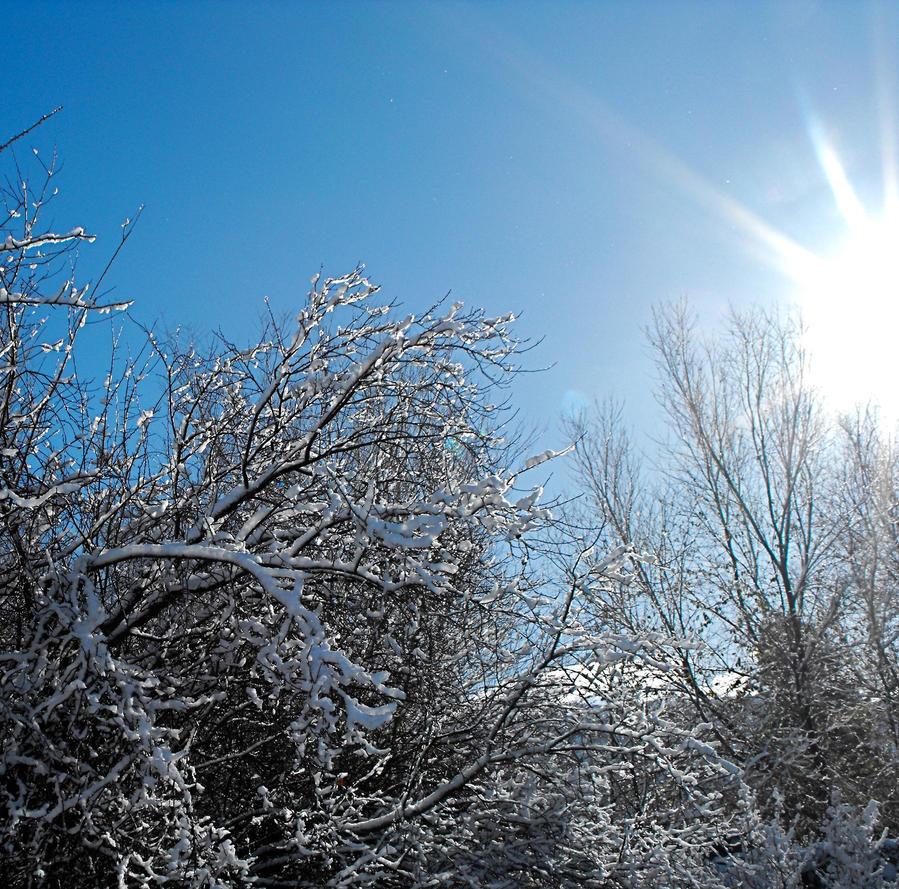 Warming Winter by Dani-the-Naiad