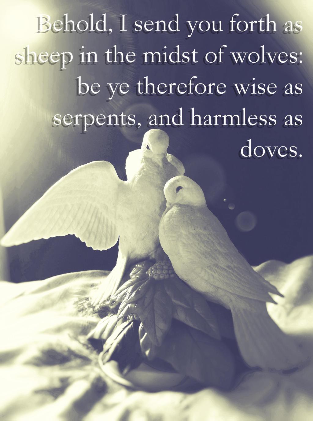 Matthew 10:16 by Tsukichan2622 on DeviantArt