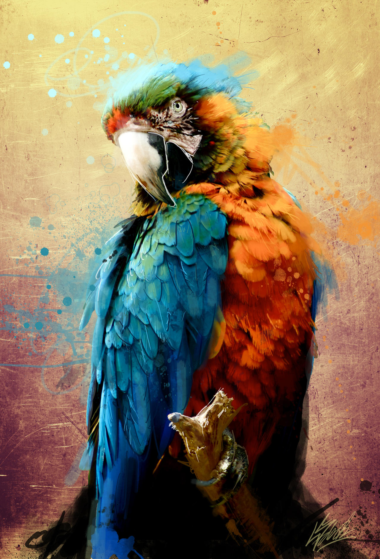 Parrot by PortratESeveN