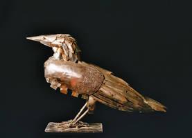 crow by arifcekderi