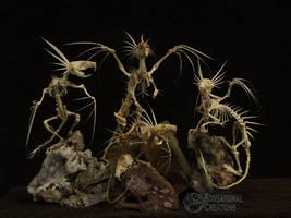 Dragon Skeletons - Skeletal Articulation
