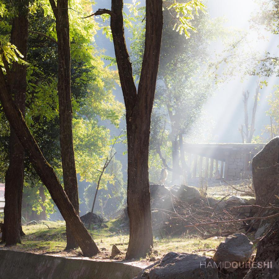 Magical Karen Valley by HamidQureshi