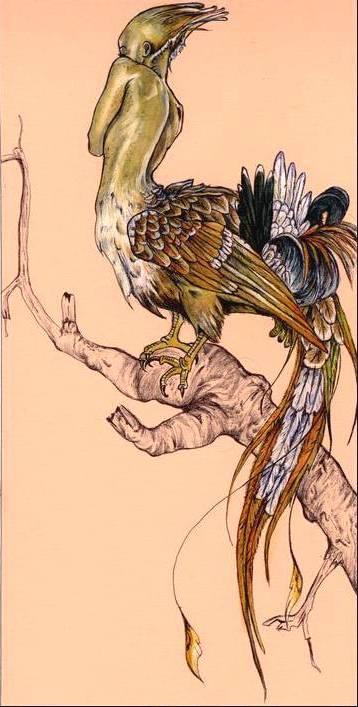 burning-brightly bird by Cephalopodwaltz