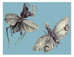 moleskine: winged things by Cephalopodwaltz