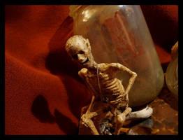 Gnomus Rustica Vulgaris - unbottled by ZombieArmadillo