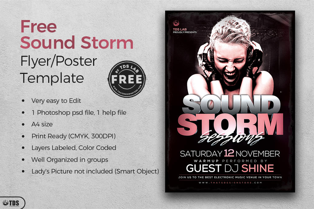 Free Sound Storm Flyer Template by Thats-Design