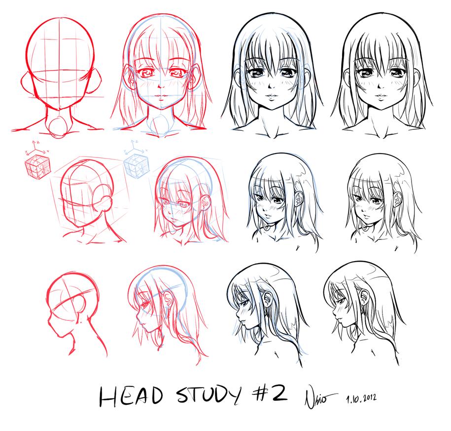 Head study #2 by Nsio