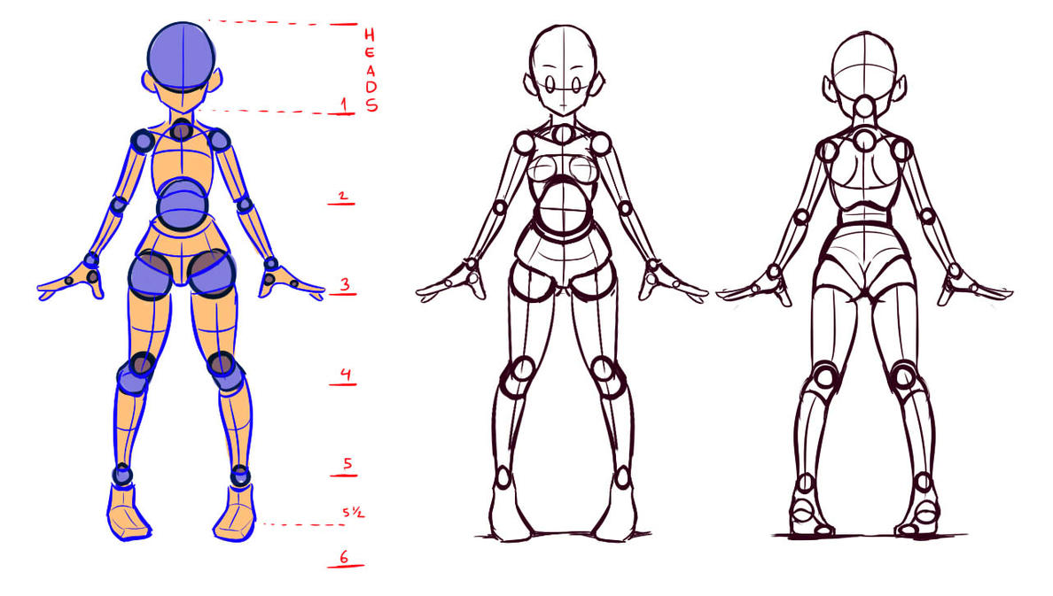 Understanding the body shapes, front and back view by Nsio