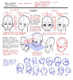 Nsio explains: Facial Proportions