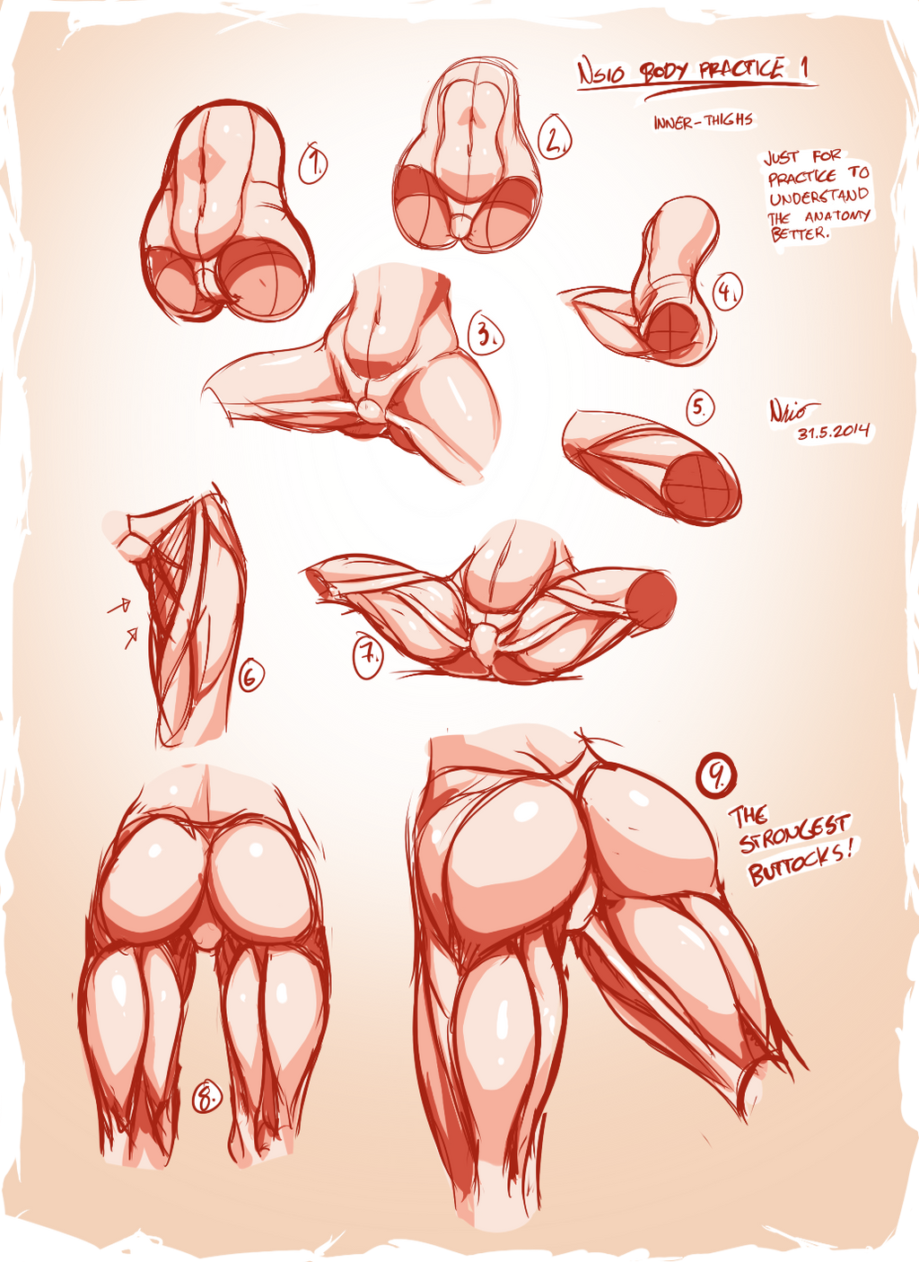 Nsio Body Practice1 Muscles Of The Inner Thigh By Nsio On Deviantart