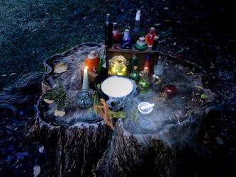 Minerva's Camp Kit by TindomielSilverthorn