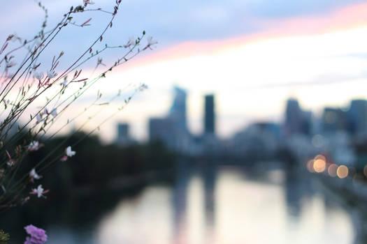 Sunset above the Seine