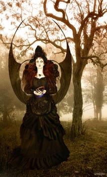 Witch - Aloynia