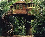 Tree house :D
