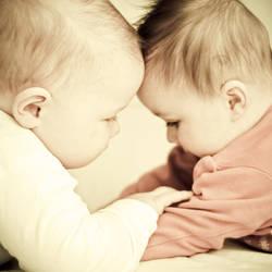 Little friends by monikha