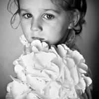little flower... by monikha