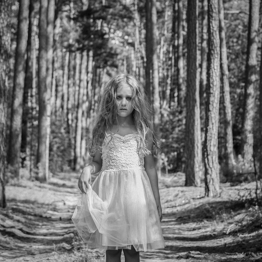 forest by monikha