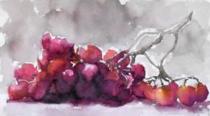 grapes watercolor painting