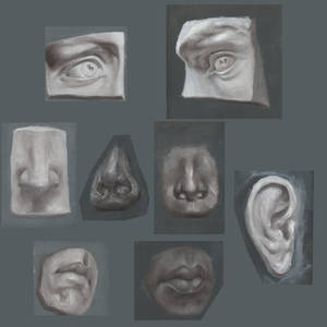Sculptures portrait parts, oil paintings