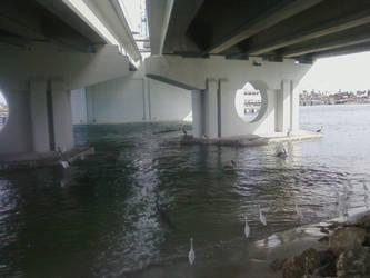 Under The Bridge 2 by SportsLunatic