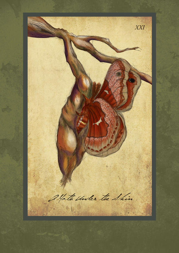 A Moth Under the Skin by JRockMistress