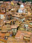 Tiny roofs of Siena