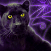 Bagheera Black 100x100 by ScaperDeage