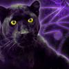Bagheera Black 100x100 by ScaperDeage