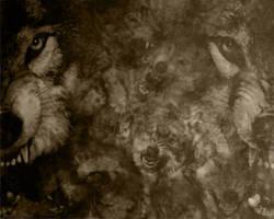 Wolf Fight Wallpaper by ScaperDeage