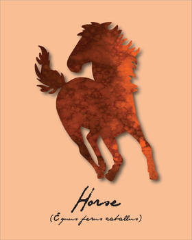 Pride Month - Orange (Horse)