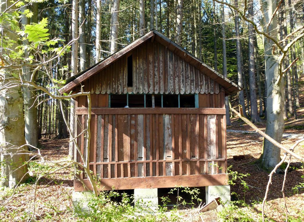 Altes Bienenhaus 2 by HansBr