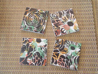 Alayna's Coasters by ravenkanzaki