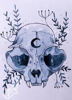 Cat Skull by as-obu