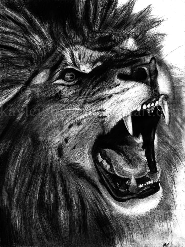 Angry Lion by kayleighmc