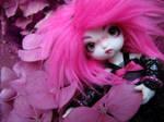 Bubblegum Flowers