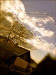 dreamscape -4-